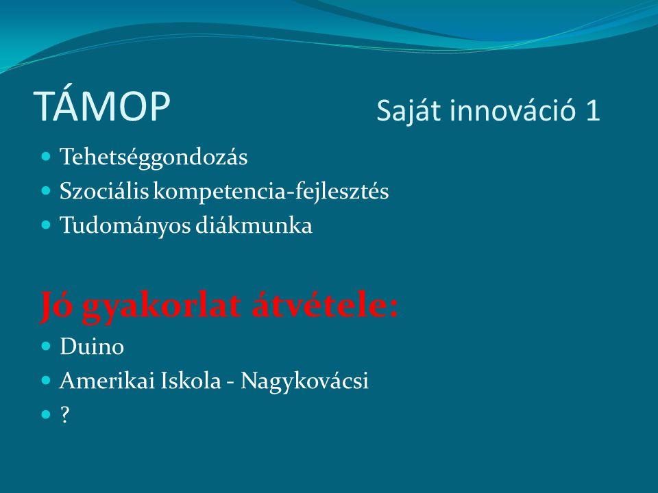 TÁMOP Saját innováció 1 Tehetséggondozás Szociális kompetencia-fejlesztés Tudományos diákmunka Jó gyakorlat átvétele: Duino Amerikai Iskola - Nagyková