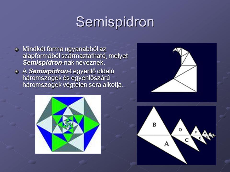 Semispidron Mindkét forma ugyanabból az alapformából származtatható, melyet Semispidron-nak neveznek. A Semispidron-t egyenlő oldalú háromszögek és eg