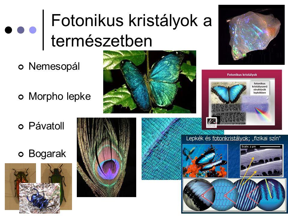 Fotonikus kristályok a természetben Nemesopál Morpho lepke Pávatoll Bogarak