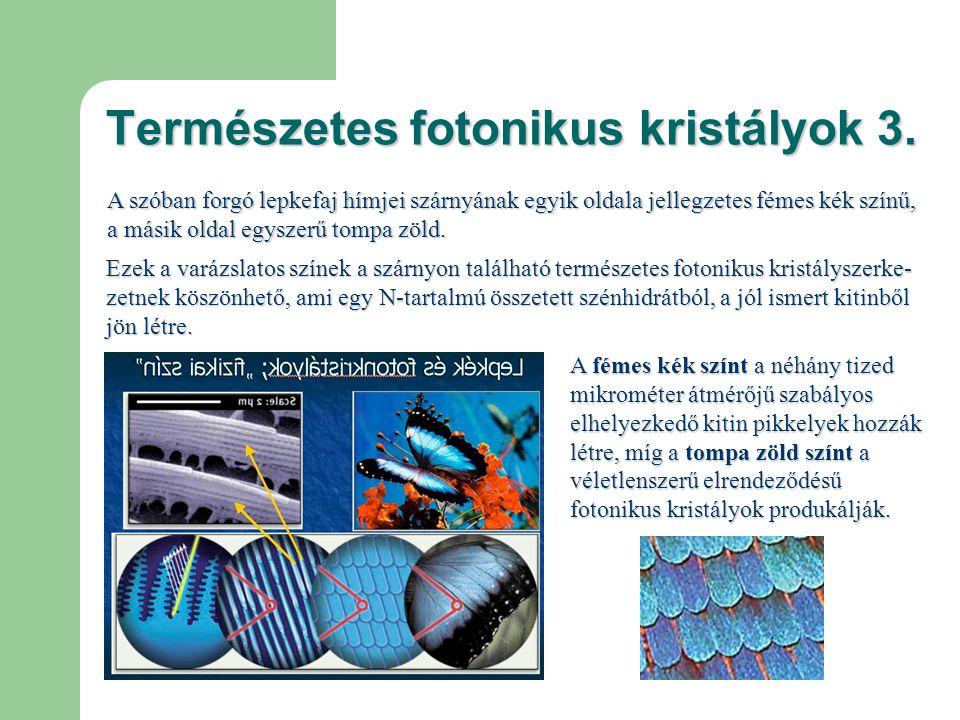 Természetes fotonikus kristályok 4.
