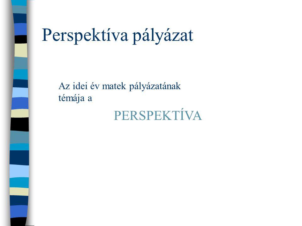 Perspektíva pályázat Az idei év matek pályázatának témája a PERSPEKTÍVA