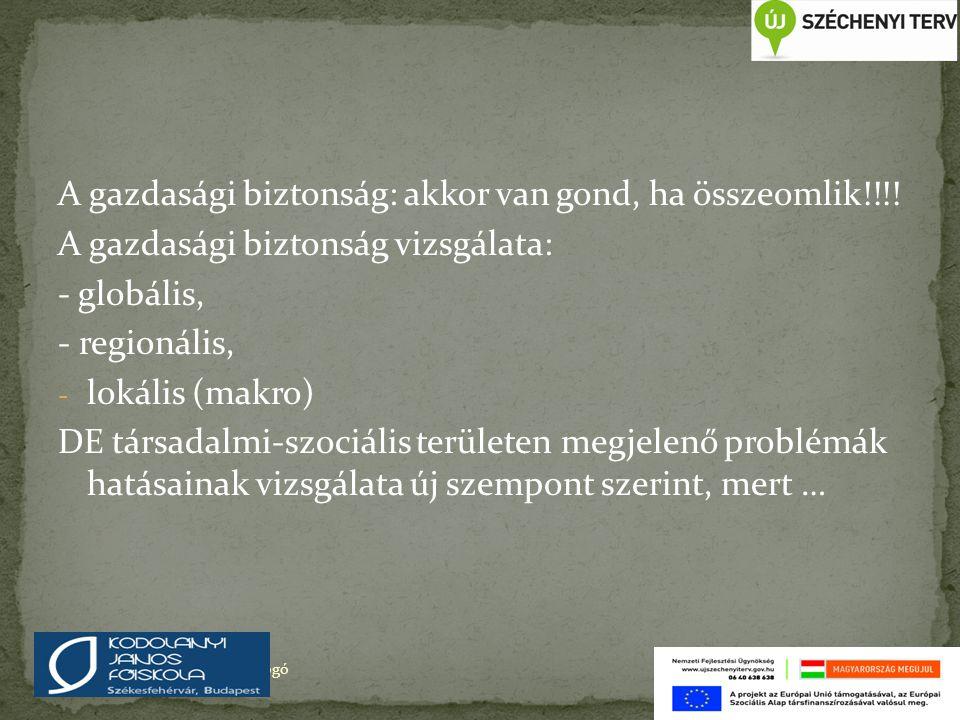 A gazdasági biztonság: akkor van gond, ha összeomlik!!!! A gazdasági biztonság vizsgálata: - globális, - regionális, - lokális (makro) DE társadalmi-s