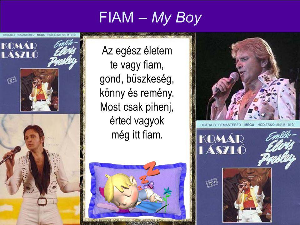 Az egész életem te vagy fiam, gond, büszkeség, könny és remény. Most csak pihenj, érted vagyok még itt fiam. FIAM – My Boy
