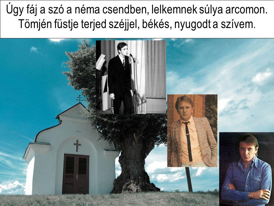 Komár László - Sírva a kápolnában (Crying In The Chapel )