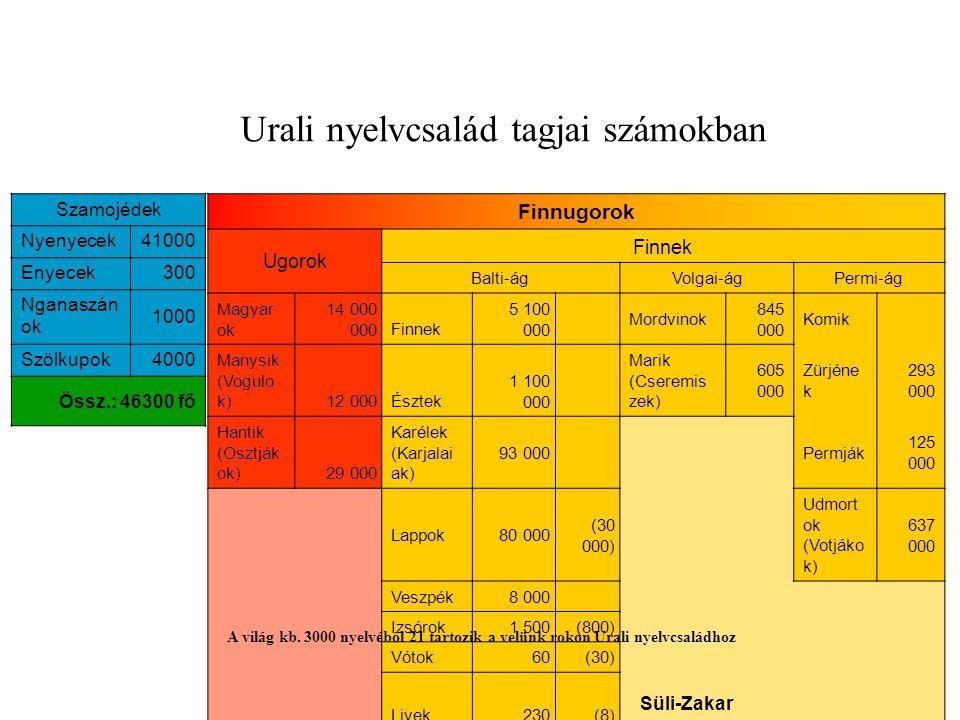Finnugorok Ugorok Finnek Balti-ágVolgai-ágPermi-ág Magyar ok 14 000 000Finnek 5 100 000 Mordvinok 845 000 Komik Manysik (Vogulo k)12 000Észtek 1 100 0