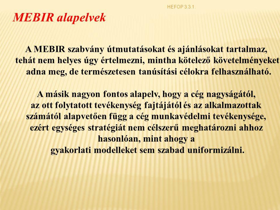 HEFOP 3.3.1. MEBIR alapelvek A MEBIR szabvány útmutatásokat és ajánlásokat tartalmaz, tehát nem helyes úgy értelmezni, mintha kötelező követelményeket