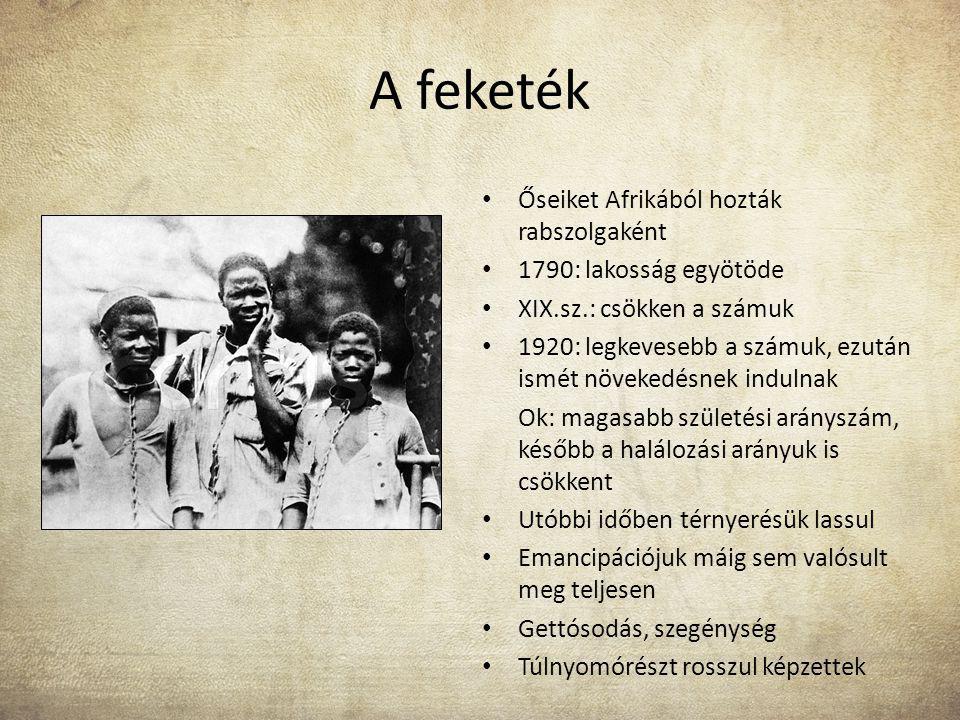 A feketék Őseiket Afrikából hozták rabszolgaként 1790: lakosság egyötöde XIX.sz.: csökken a számuk 1920: legkevesebb a számuk, ezután ismét növekedésn