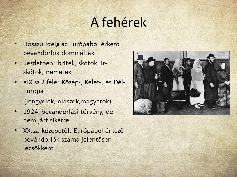 A fehérek Hosszú ideig az Európából érkező bevándorlók domináltak Kezdetben: britek, skótok, ír- skótok, németek XIX.sz.2.fele: Közép-, Kelet-, és Dél