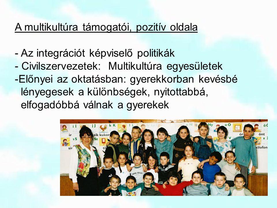 A multikultúra támogatói, pozitív oldala - Az integrációt képviselő politikák - Civilszervezetek: Multikultúra egyesületek -Előnyei az oktatásban: gye