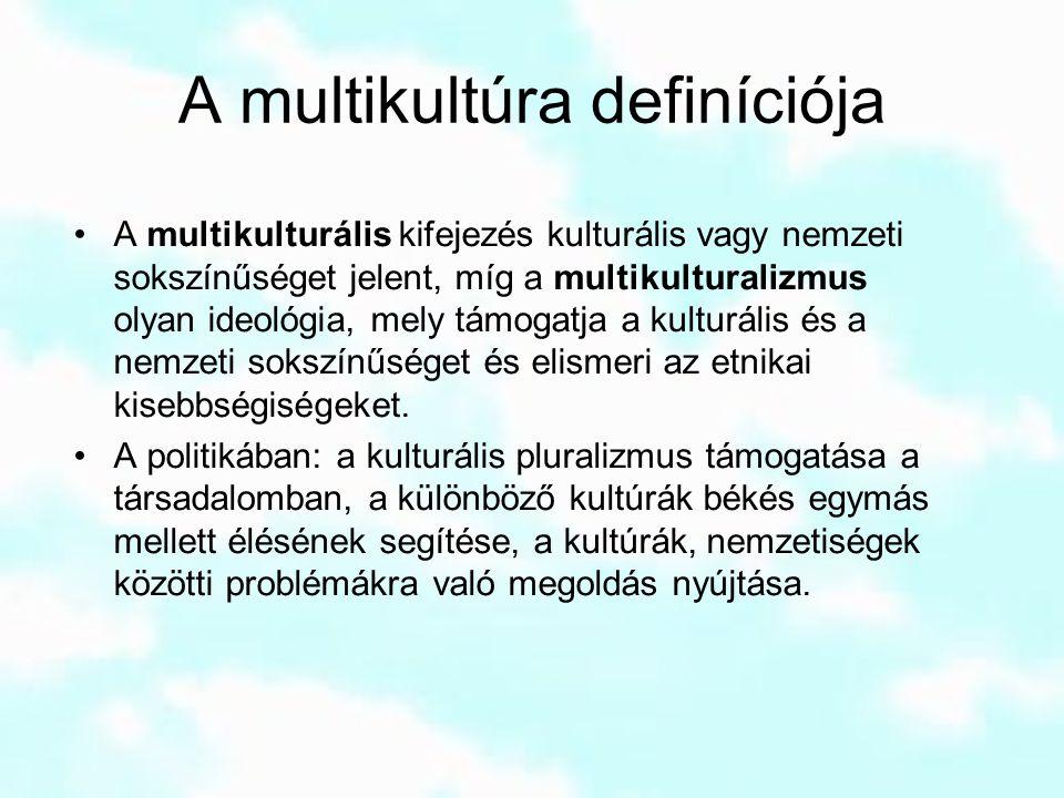 A multikultúra definíciója A multikulturális kifejezés kulturális vagy nemzeti sokszínűséget jelent, míg a multikulturalizmus olyan ideológia, mely tá