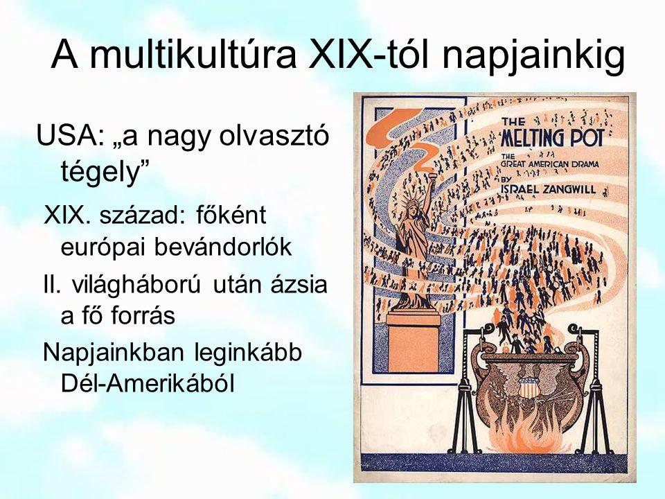 """A multikultúra XIX-tól napjainkig USA: """"a nagy olvasztó tégely"""" XIX. század: főként európai bevándorlók II. világháború után ázsia a fő forrás Napjain"""