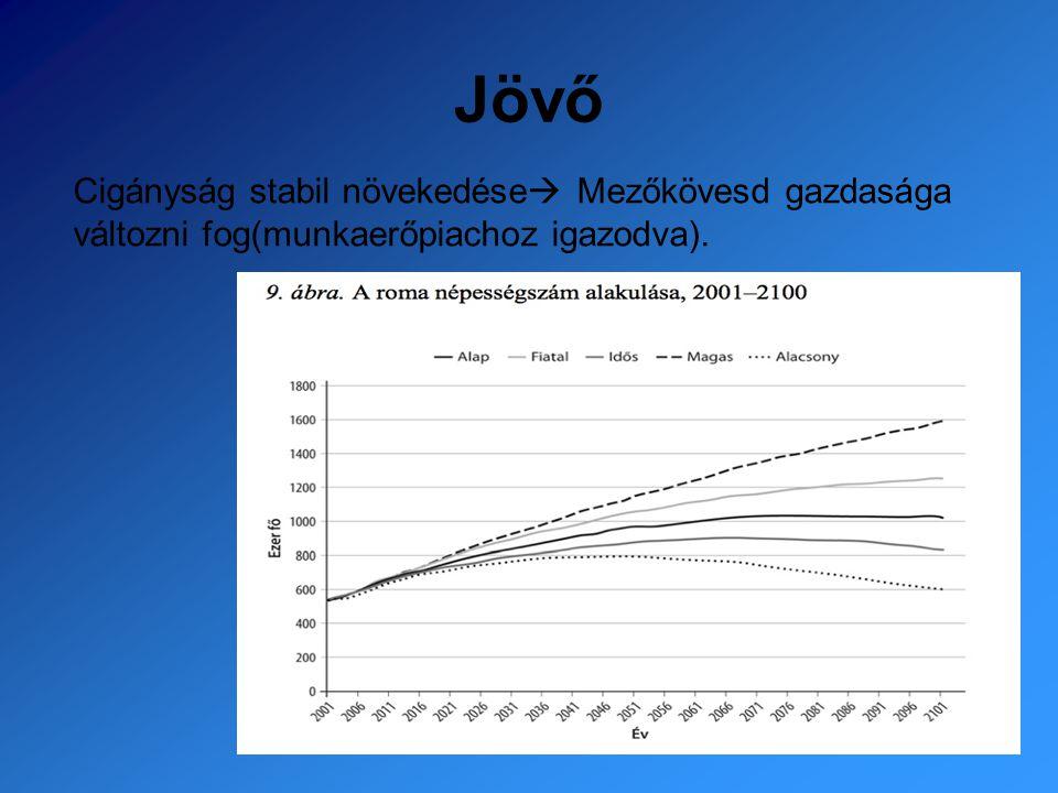 Jövő Cigányság stabil növekedése  Mezőkövesd gazdasága változni fog(munkaerőpiachoz igazodva).