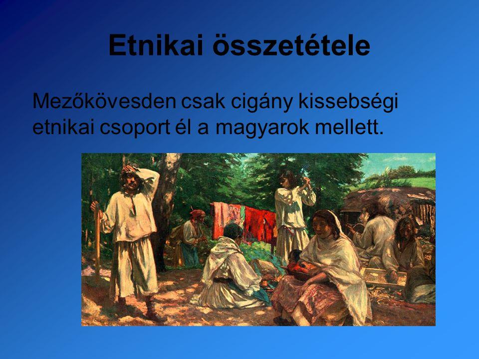 Etnikai összetétele Mezőkövesden csak cigány kissebségi etnikai csoport él a magyarok mellett.