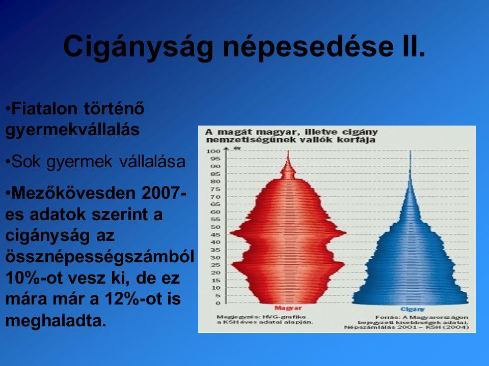 Cigányság népesedése II. Fiatalon történő gyermekvállalás Sok gyermek vállalása Mezőkövesden 2007- es adatok szerint a cigányság az össznépességszámbó