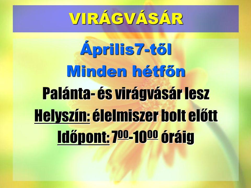 VIRÁGVÁSÁR Április7-től Minden hétfőn Palánta- és virágvásár lesz Helyszín: élelmiszer bolt előtt Időpont: 700-1000 óráig