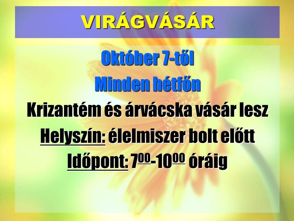 VIRÁGVÁSÁR Október 7-től Minden hétfőn Krizantém és árvácska vásár lesz Helyszín: élelmiszer bolt előtt Időpont: 700-1000 óráig