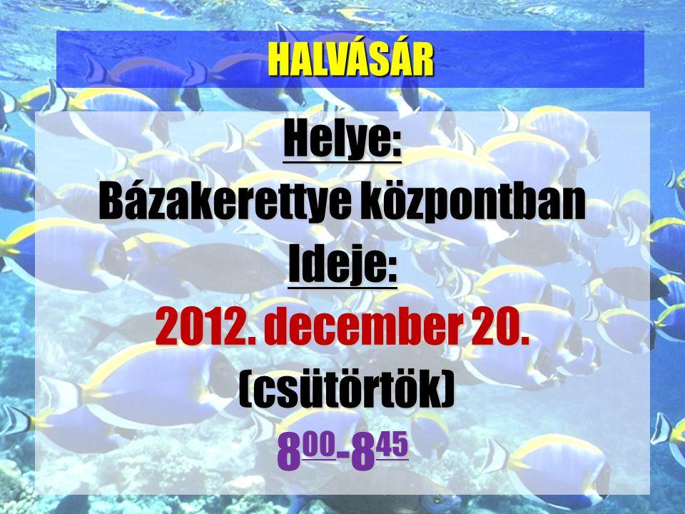 Helye: Bázakerettye központban Ideje: 2012. december 20. (csütörtök) 800-845 HALVÁSÁR