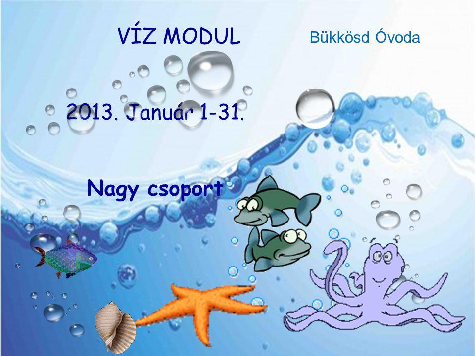 VÍZ MODUL 2013. Január 1-31. Nagy csoport Bükkösd Óvoda