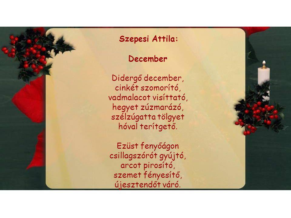 Szepesi Attila: December Didergő december, cinkét szomorító, vadmalacot visíttató, hegyet zúzmarázó, szélzúgatta tölgyet hóval terítgető.