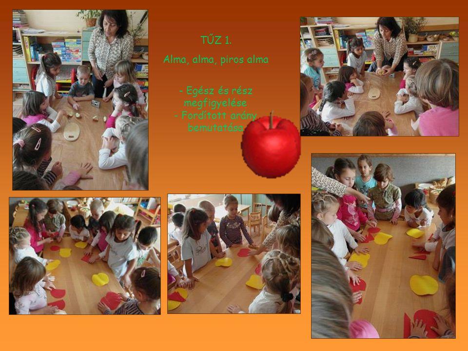 TŰZ 1. Alma, alma, piros alma - Egész és rész megfigyelése - Fordított arány bemutatása