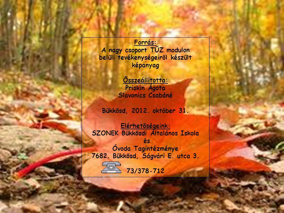 Forrás: A nagy csoport TŰZ modulon belüli tevékenységeiről készült képanyag Összeállította: Priskin Ágota Slavonics Csabáné Bükkösd, 2012. október 31.