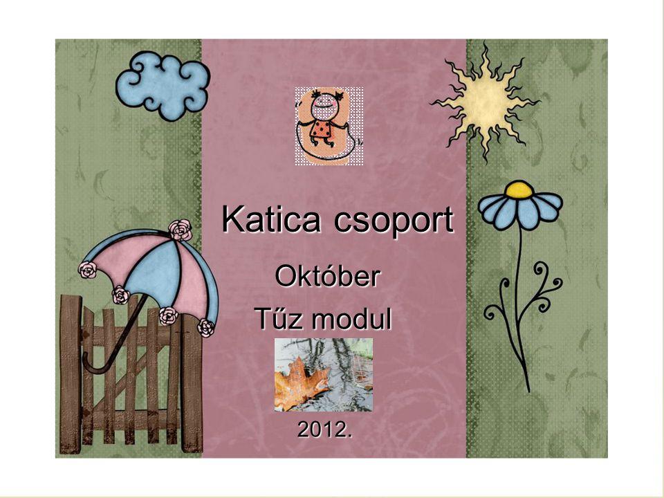 Katica csoport Október Október Tűz modul Tűz modul 2012. 2012.