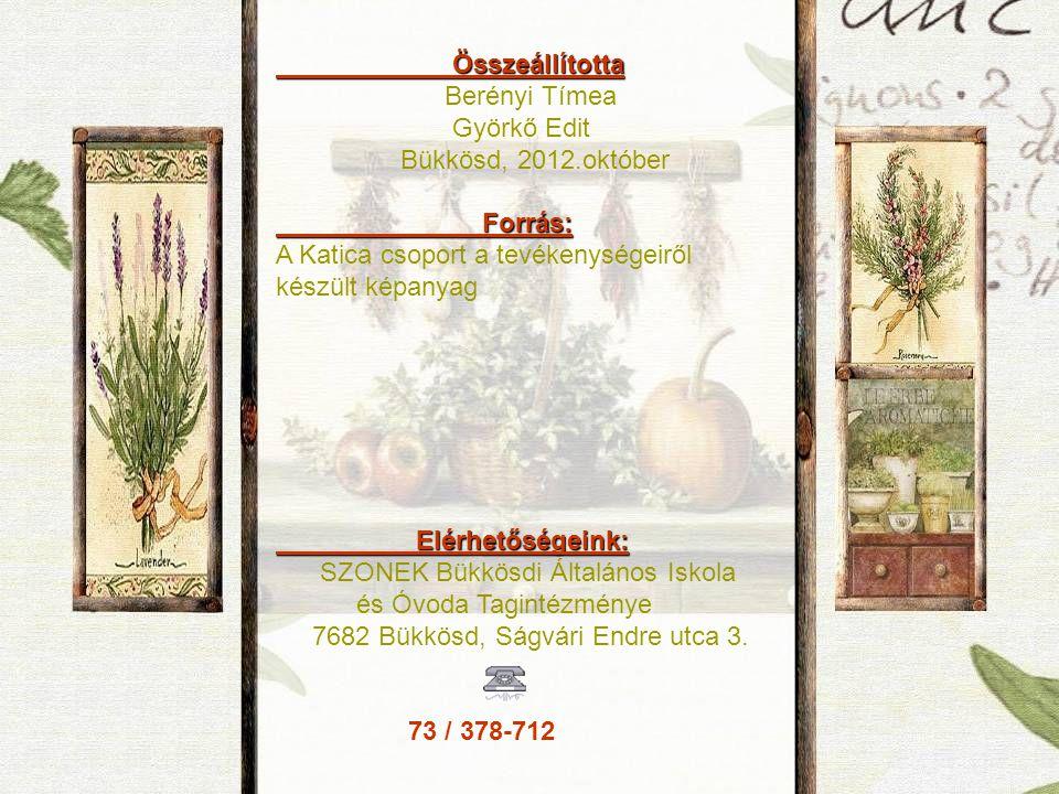 Összeállította Összeállította Berényi Tímea Györkő Edit Bükkösd, 2012.október Forrás: Forrás: A Katica csoport a tevékenységeiről készült képanyag Elé