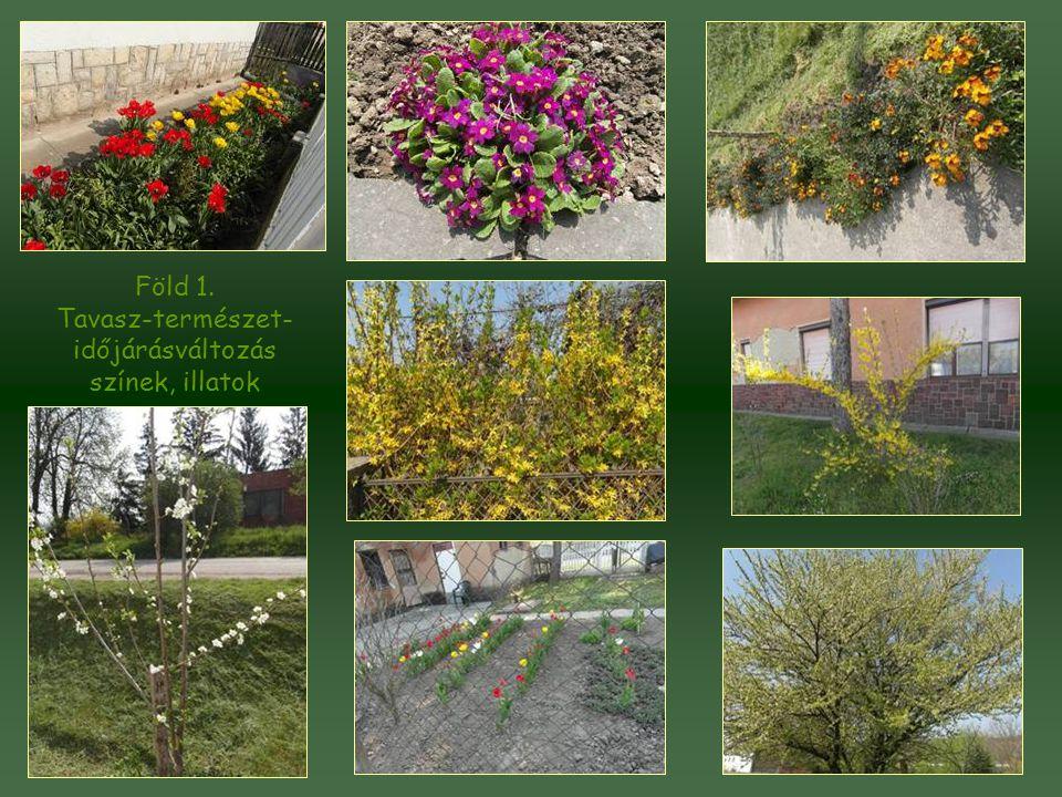 Föld 1. Tavasz-természet- időjárásváltozás színek, illatok
