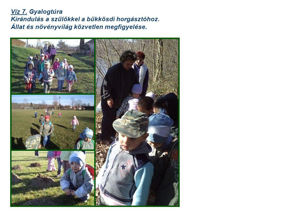 Víz 7. Gyalogtúra Kirándulás a szülőkkel a bükkösdi horgásztóhoz. Állat és növényvilág közvetlen megfigyelése.