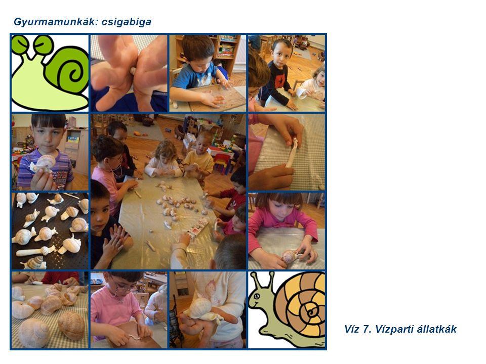 Gyurmamunkák: csigabiga Víz 7. Vízparti állatkák