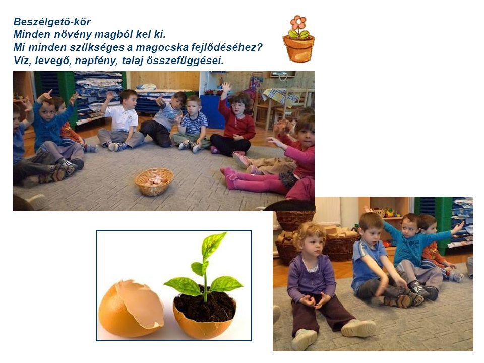 Beszélgető-kör Minden növény magból kel ki. Mi minden szükséges a magocska fejlődéséhez? Víz, levegő, napfény, talaj összefüggései.