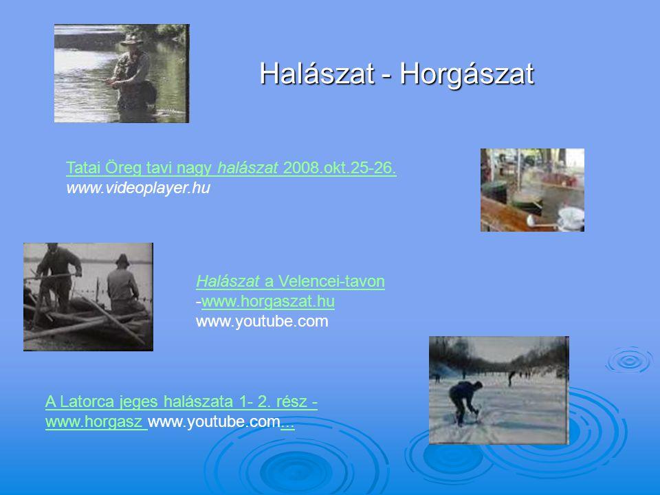 Halászat - Horgászat Tatai Öreg tavi nagy halászat 2008.okt.25-26. Tatai Öreg tavi nagy halászat 2008.okt.25-26. www.videoplayer.hu Halászat a Velence
