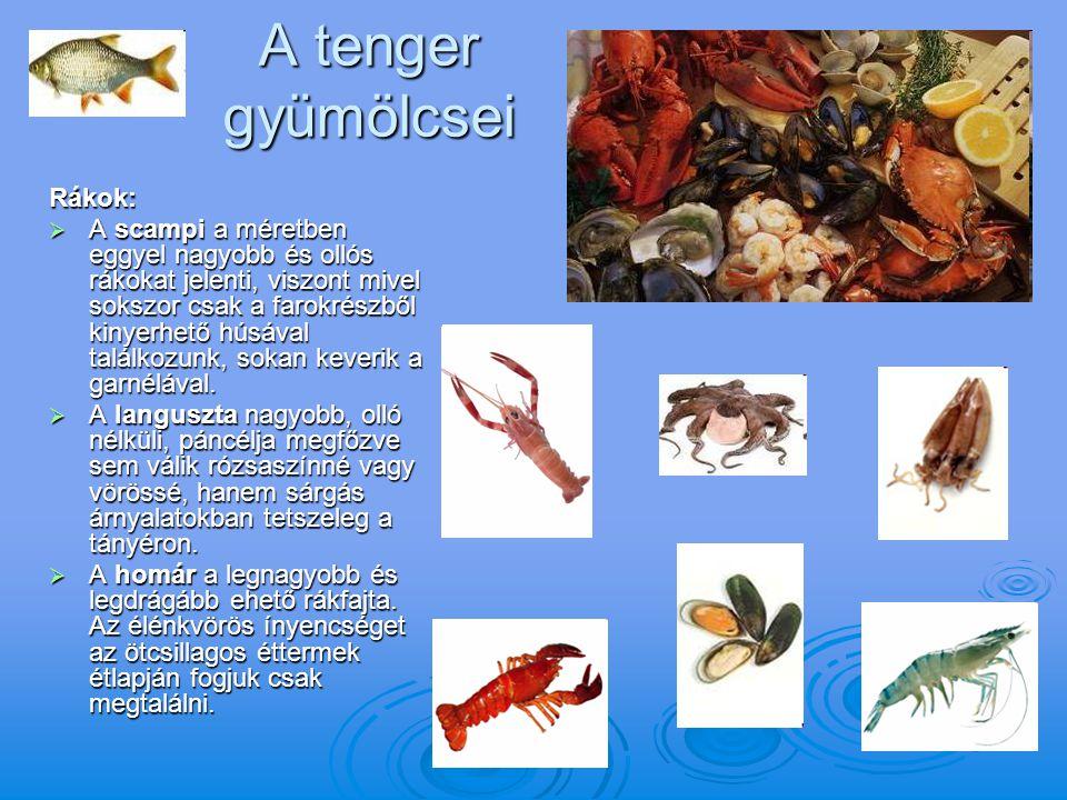 A tenger gyümölcsei Rákok:  A scampi a méretben eggyel nagyobb és ollós rákokat jelenti, viszont mivel sokszor csak a farokrészből kinyerhető húsával