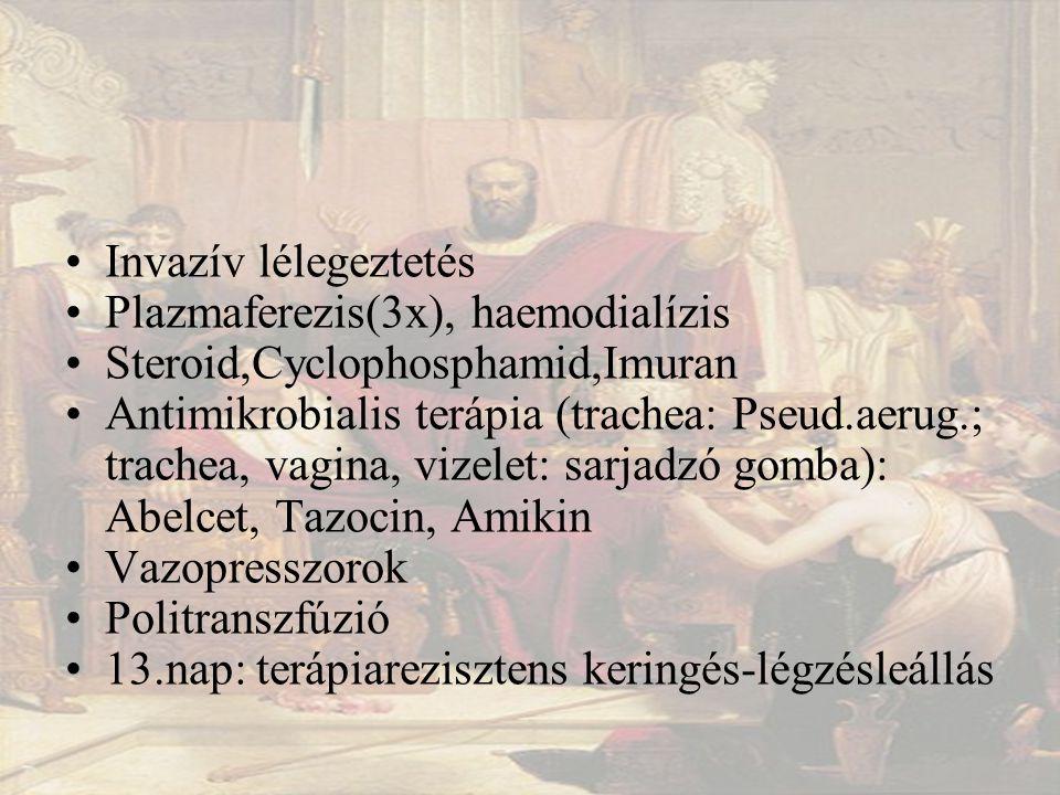 Invazív lélegeztetés Plazmaferezis(3x), haemodialízis Steroid,Cyclophosphamid,Imuran Antimikrobialis terápia (trachea: Pseud.aerug.; trachea, vagina, vizelet: sarjadzó gomba): Abelcet, Tazocin, Amikin Vazopresszorok Politranszfúzió 13.nap: terápiarezisztens keringés-légzésleállás