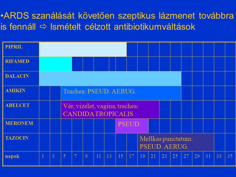 PIPRIL RIFAMED DALACIN AMIKIN Trachea: PSEUD. AERUG.