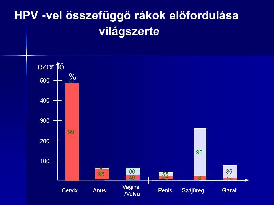 85 15 92 8 400 300 200 100 Anus Vagina /Vulva Penis ezer fő % 500 CervixSzájüregGarat 55 45 60 40 5 95.01 99 HPV-vel összefüggő rákok előfordulása vil
