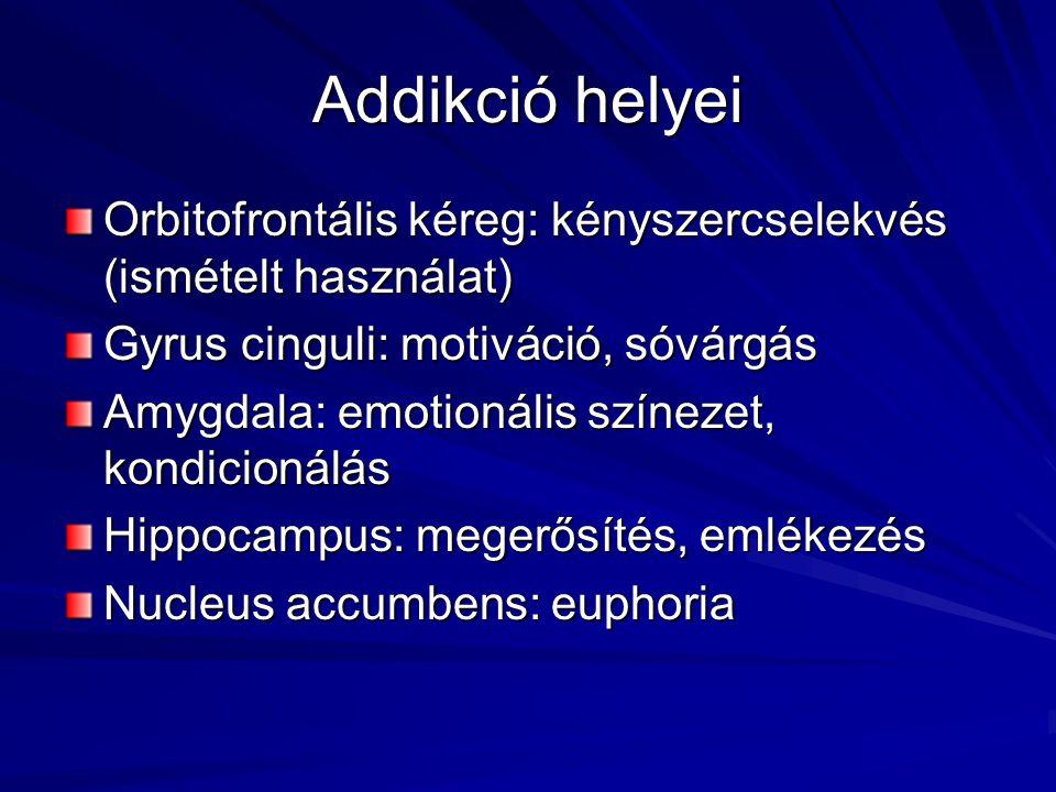 Addikció helyei Orbitofrontális kéreg: kényszercselekvés (ismételt használat) Gyrus cinguli: motiváció, sóvárgás Amygdala: emotionális színezet, kondicionálás Hippocampus: megerősítés, emlékezés Nucleus accumbens: euphoria