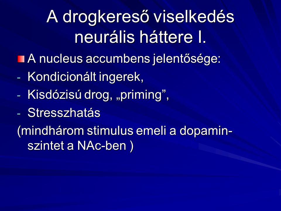 """A drogkereső viselkedés neurális háttere I. A nucleus accumbens jelentősége: - Kondicionált ingerek, - Kisdózisú drog, """"priming"""", - Stresszhatás (mind"""