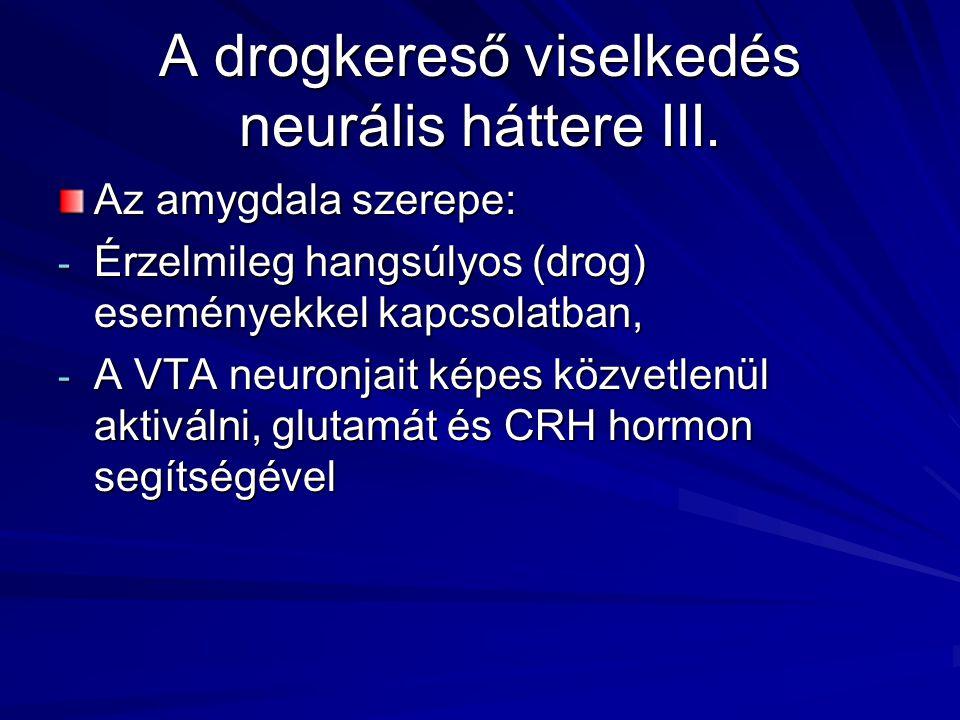 A drogkereső viselkedés neurális háttere III. Az amygdala szerepe: - Érzelmileg hangsúlyos (drog) eseményekkel kapcsolatban, - A VTA neuronjait képes