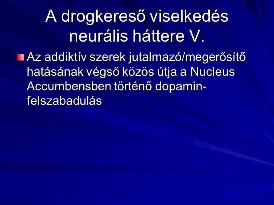 A drogkereső viselkedés neurális háttere V. Az addiktív szerek jutalmazó/megerősítő hatásának végső közös útja a Nucleus Accumbensben történő dopamin-