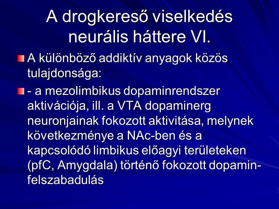 A drogkereső viselkedés neurális háttere VI. A különböző addiktív anyagok közös tulajdonsága: - a mezolimbikus dopaminrendszer aktivációja, ill. a VTA