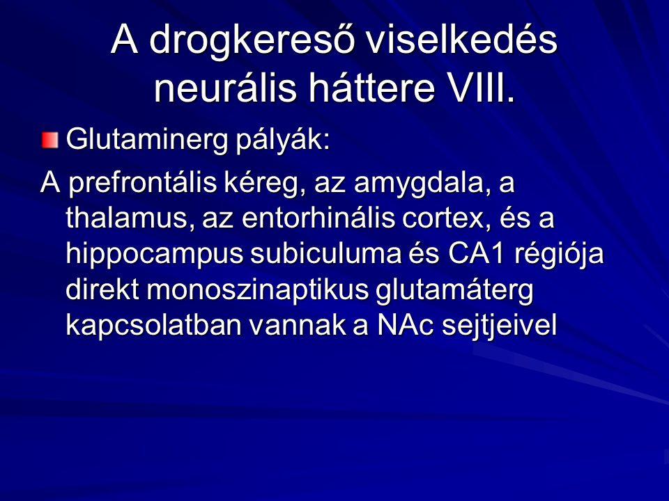 A drogkereső viselkedés neurális háttere VIII. Glutaminerg pályák: A prefrontális kéreg, az amygdala, a thalamus, az entorhinális cortex, és a hippoca