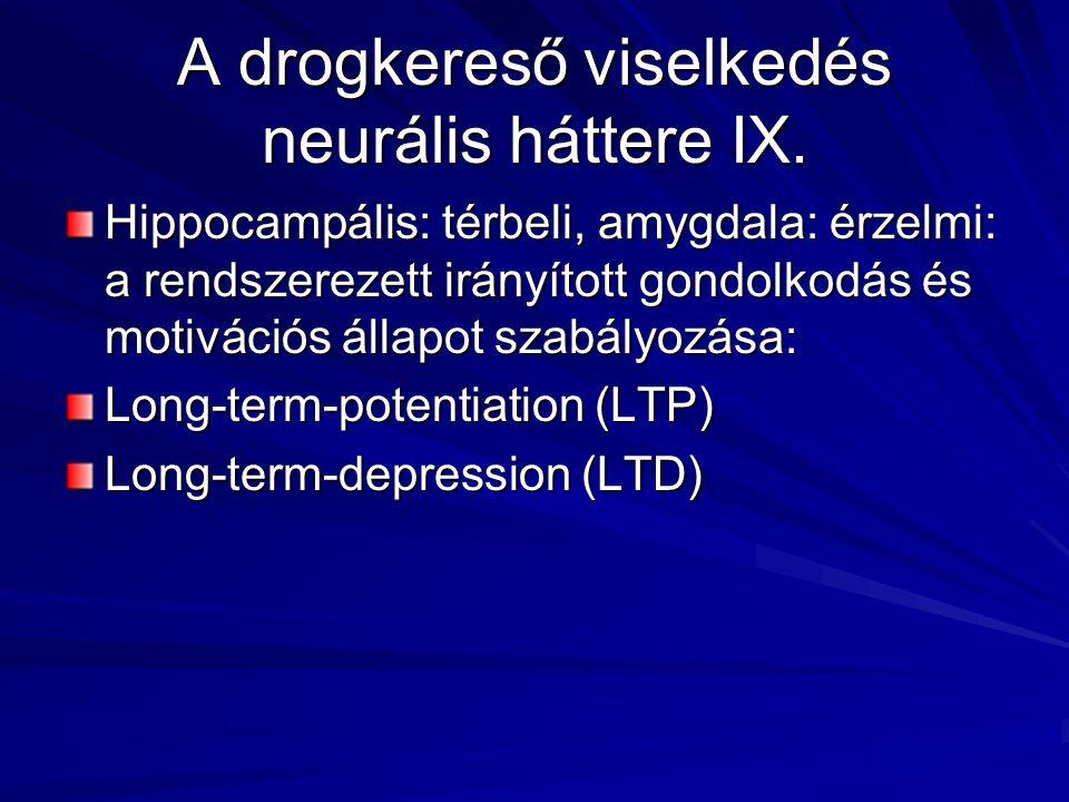 A drogkereső viselkedés neurális háttere IX. Hippocampális: térbeli, amygdala: érzelmi: a rendszerezett irányított gondolkodás és motivációs állapot s