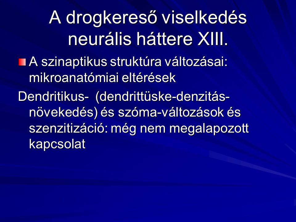 A drogkereső viselkedés neurális háttere XIII. A szinaptikus struktúra változásai: mikroanatómiai eltérések Dendritikus- (dendrittüske-denzitás- növek