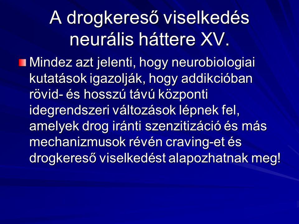 A drogkereső viselkedés neurális háttere XV. Mindez azt jelenti, hogy neurobiologiai kutatások igazolják, hogy addikcióban rövid- és hosszú távú közpo