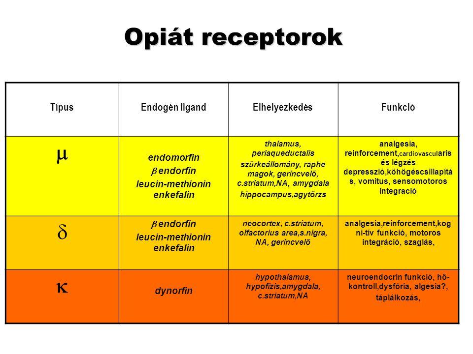 Meyer JS, Quenzer LF: Psychopharmacology, 2005