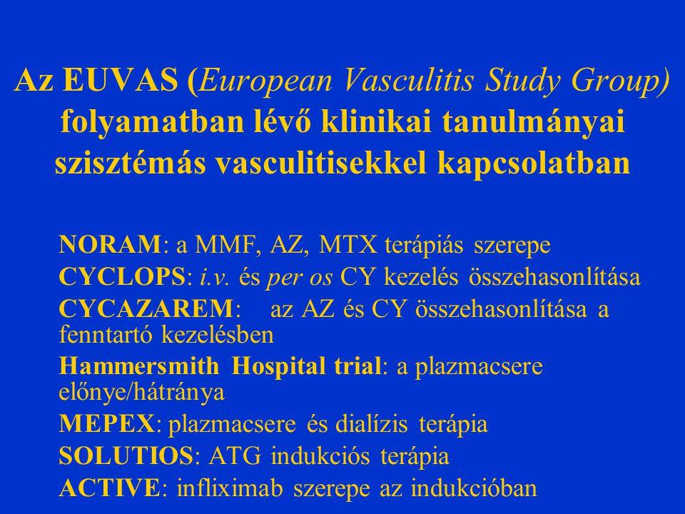 Az EUVAS (European Vasculitis Study Group) folyamatban lévő klinikai tanulmányai szisztémás vasculitisekkel kapcsolatban NORAM: a MMF, AZ, MTX terápiás szerepe CYCLOPS: i.v.