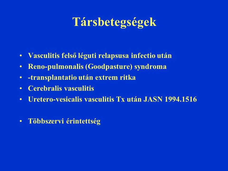 Társbetegségek Vasculitis felső léguti relapsusa infectio után Reno-pulmonalis (Goodpasture) syndroma -transplantatio után extrem ritka Cerebralis vasculitis Uretero-vesicalis vasculitis Tx után JASN 1994.1516 Többszervi érintettség