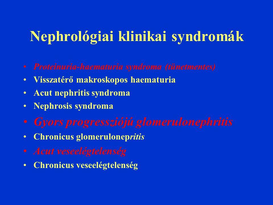 Nephrológiai klinikai syndromák Proteinuria-haematuria syndroma (tünetmentes) Visszatérő makroskopos haematuria Acut nephritis syndroma Nephrosis syndroma Gyors progressziójú glomerulonephritis Chronicus glomerulonepritis Acut veseelégtelenség Chronicus veseelégtelenség