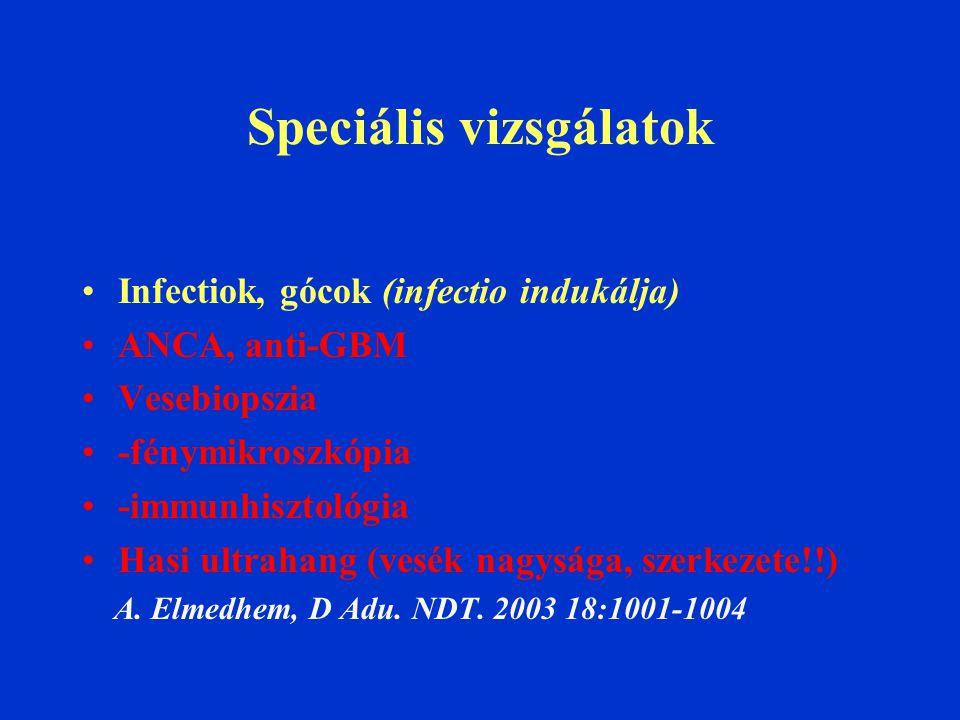 Speciális vizsgálatok Infectiok, gócok (infectio indukálja) ANCA, anti-GBM Vesebiopszia -fénymikroszkópia -immunhisztológia Hasi ultrahang (vesék nagysága, szerkezete!!) A.